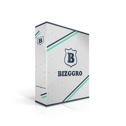 Bizggro Review (1)