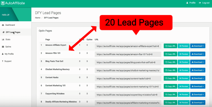 DFY LEAD PAGES REVIEW 2