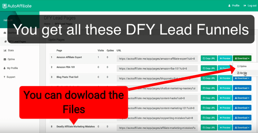 DFY Lead Pages Review 4