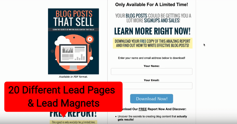 DFY Lead Pages Review 9