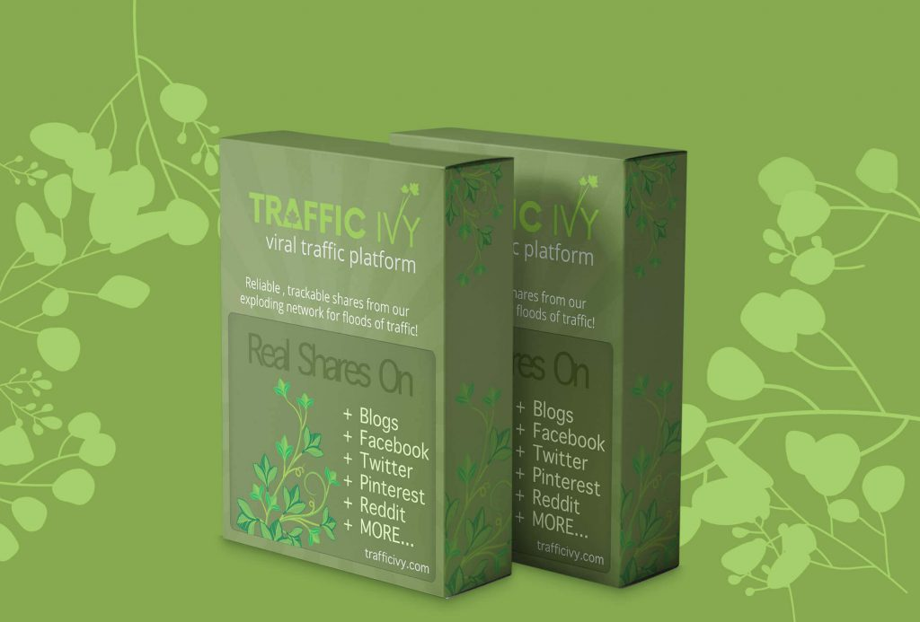 TRAFFIC IVY Review 1 (1) (1)